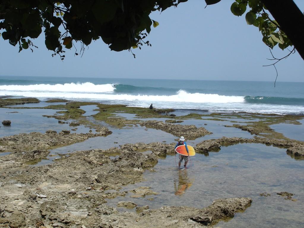 trip surf Java