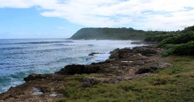 Guadeloupe Surf