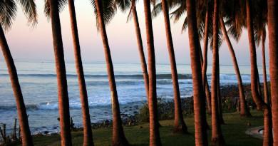 Salvador surf Punta roca