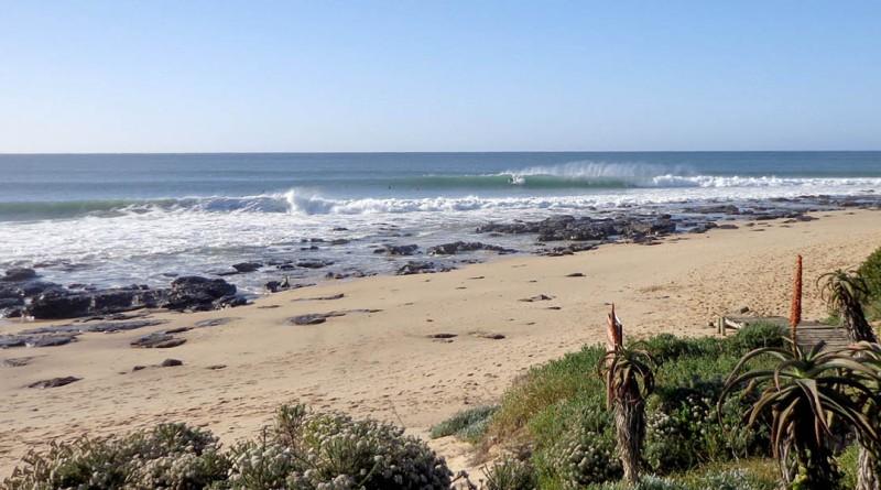 Afrique du Sud Safari Jeffrey's bay surf trip
