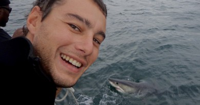 Afrique du Sud Mossel bay surf trip requin