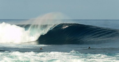 SUMATRA HONEY SMACK BARREL SURF